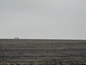 plains of Kansas